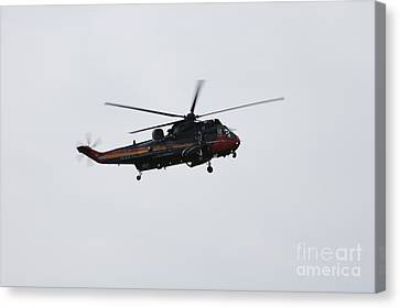 Sea King Helicopter Of The Belgian Army Canvas Print by Luc De Jaeger