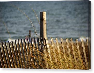 Sea Oats Canvas Print