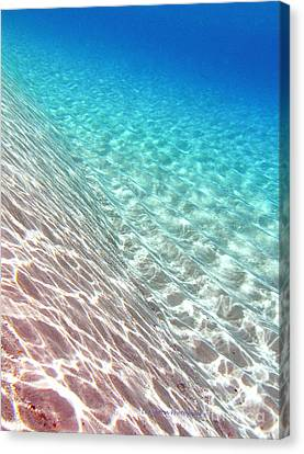 Sea Of Tranquility Canvas Print by Li Newton