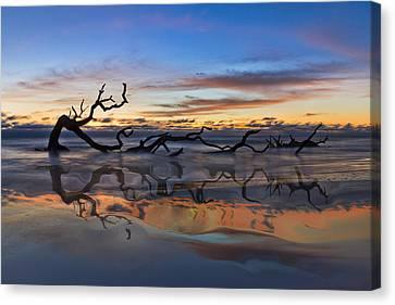 Jeckll Island Canvas Print - Sea Serpent by Debra and Dave Vanderlaan