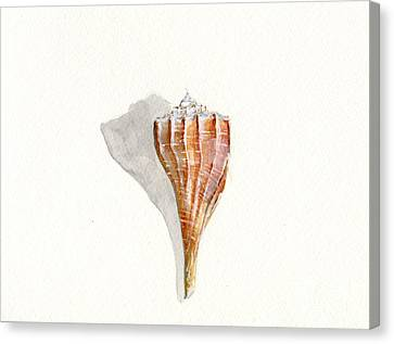 Sea Shell Watercolor Canvas Print by Sheryl Heatherly Hawkins