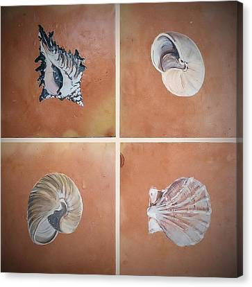 Canvas Print featuring the ceramic art Sea Shells by Andrew Drozdowicz