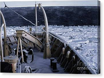 Sea Smoke, Sea Ice, And Icicles Canvas Print by Science Source