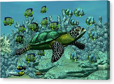 Sea Turtle Canvas Print by Walter Colvin