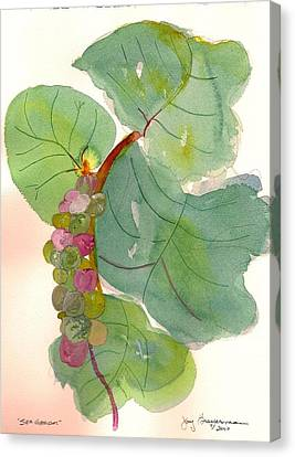 Canvas Print featuring the painting Seagrapes by Joy Braverman
