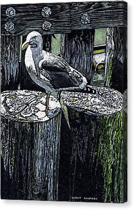 Seagull At Pier Canvas Print by Robert Goudreau