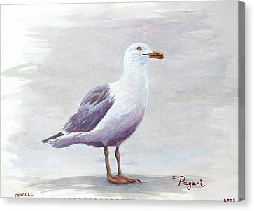 Seagull Canvas Print by Chriss Pagani