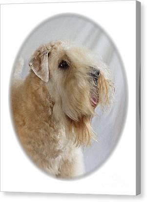 Sealyham Terrier 645 Canvas Print by Larry Matthews