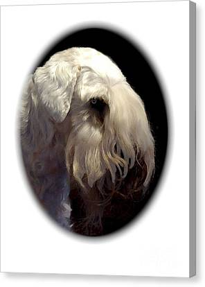 Sealyham Terrier 650 Canvas Print by Larry Matthews