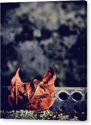Season Of Fire Canvas Print by Odd Jeppesen