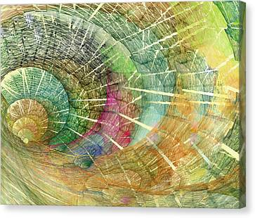 Season Of The Shell Canvas Print by Betsy Knapp