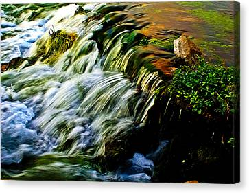 Rapids Canvas Print - Seasonal Roar by Joshua Dwyer