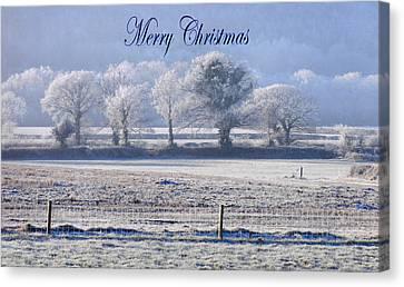 Seasons Greetings Canvas Print by Debra Collins