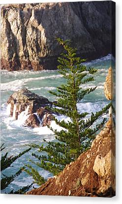 Secluded Big Sur Cove 2 Canvas Print by Jeff Lowe
