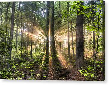 Second Coming Canvas Print by Debra and Dave Vanderlaan