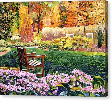 Secret Garden Chair Canvas Print by David Lloyd Glover