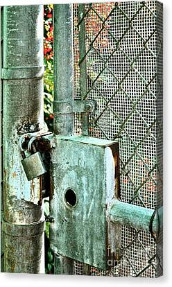 Secure Canvas Print by Gwyn Newcombe