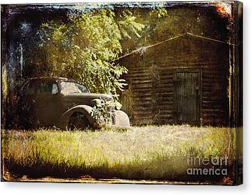 Seen Better Days Canvas Print by Sari Sauls