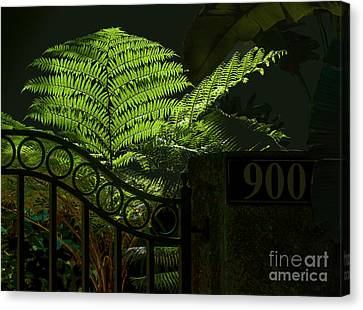 Selby Fern Canvas Print