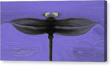 Self Reflections Canvas Print by James Mancini Heath