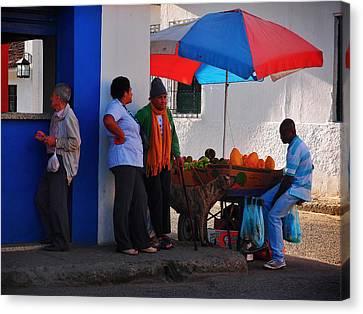Senor Papaya Canvas Print by Skip Hunt