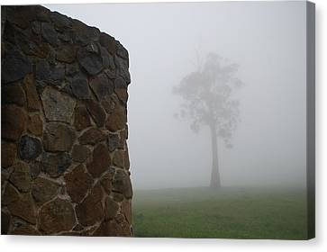 Sentinel In The Mist Canvas Print by Sarah King