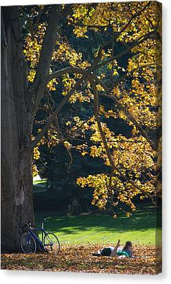 Canvas Print featuring the photograph September Dreams by Joseph Yarbrough