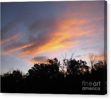 September Sunrise 1 Canvas Print by Cedric Hampton