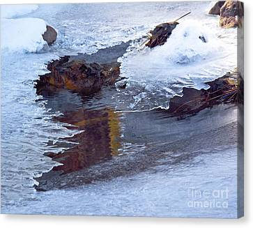 Serendipity In Ice  Canvas Print