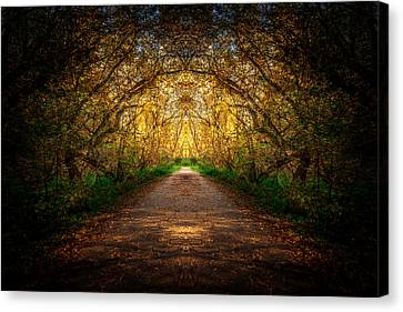 Serene Archway Canvas Print