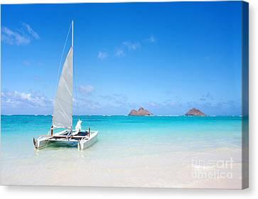 Michael Sweet Canvas Print - Serene Tropical Beach by Michael Sweet
