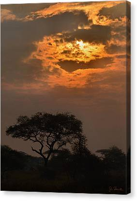 Serengeti Sun No. 1 Canvas Print by Joe Bonita