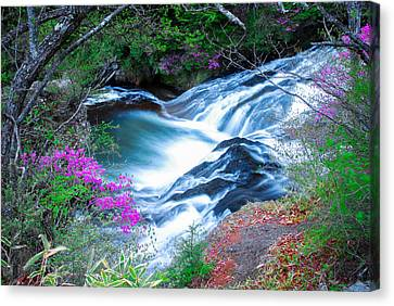 Serenity Flowing Canvas Print by Jonah  Anderson