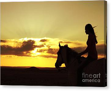 Serenity In Gold Canvas Print by Val Armstrong
