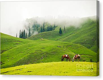 Serenity Canvas Print by Syed Aqueel