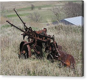 Set Out To Pasture Canvas Print by Steve Sperry