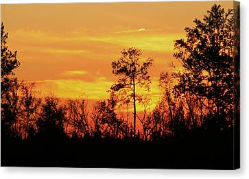 Setting Sun Canvas Print by Karen Harrison