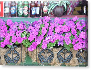 Seven Bottles Of Beer On The Wall Canvas Print by Jan Amiss Photography