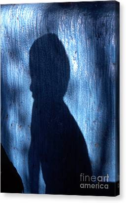 Shadow Canvas Print by Barry Shaffer