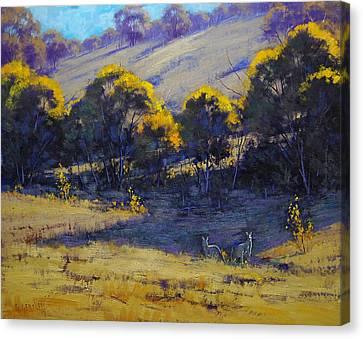 Kangaroo Canvas Print - Shady Corner by Graham Gercken