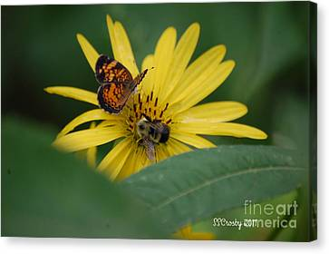 Sharing Canvas Print