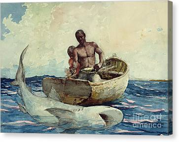 Hammerhead Shark Canvas Print - Shark Fishing by Winslow Homer