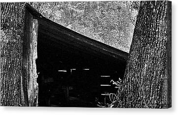 Canvas Print featuring the photograph Shed Between Two Oaks Near Alexandria by Louis Nugent