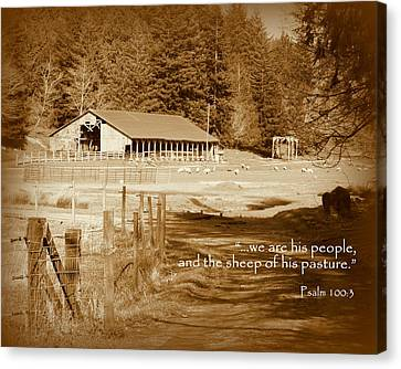 Sheep Grazing By Barn Scripture Canvas Print