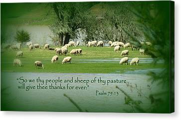 Sheep Grazing Scripture Art Canvas Print by Cindy Wright
