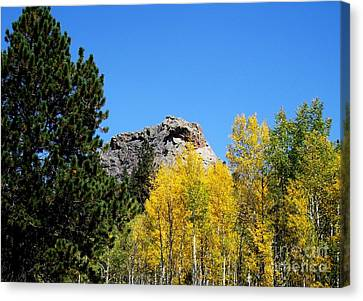 Sheep Nose Mountain In The Autumn Canvas Print by Donna Parlow