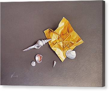 Shells Of The Day Canvas Print by Elena Kolotusha