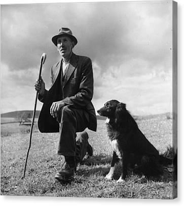 Shepherd Canvas Print by Bert Hardy