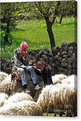 Canvas Print - shepherds in Golan by Issam Hajjar