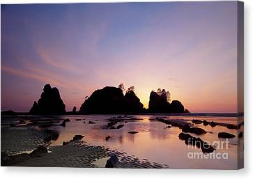 Shi Shi Beach Canvas Print by Keith Kapple